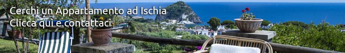 Appartamenti Ischia, Succhivo, Sant'Angelo, B&B ISchia